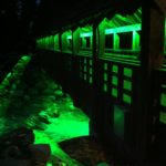 Illuminated Bridge in Whistler